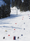 Giant Slalom Racers at Whistler Mountain Resort Photographic Print by Christian Kober