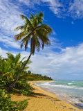 Tres Palmitas Beach, Puerto Rico, West Indies, Caribbean, Central America Photographic Print by Michael DeFreitas