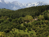 Mountain View Near St. Marsal, Pyrenees Orientales, France, Europe Photographic Print by Peter Richardson