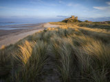 Looking Towards Bamburgh Castle Bathed in Evening Light from the Dunes Above Bamburgh Beach Photographic Print by Lee Frost