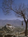 Potala Palace from Yuwang Shan Mountain, Lhasa, Tibet, China, Asia Photographic Print by Nigel Blythe