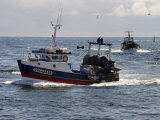 Fishing Boats Returning to Harbour, Guilvinec, Finistere, Brittany, France, Europe Photographic Print by Peter Richardson