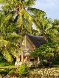 Men's House, Yap, Micronesia, Pacific Photographic Print by Nico Tondini