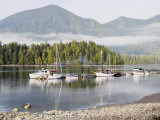 Boats Moored at Tofino Rim National Park Reserve, Vancouver Island, British Columbia, Canada Photographic Print by Christian Kober