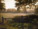 Early Morning Sun on Frosty Farmland at Fordcombe, Kent, England, United Kingdom, Europe Photographic Print by Hazel Stuart