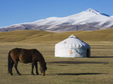 Nomads Horse and Yurt, Bayanbulak, Xinjiang Province, China, Asia Photographic Print by Christian Kober
