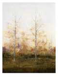 Two Trees Suspended in Time Giclee Print by Danna Harvey