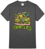 Teenage Mutant Ninja Turtles - TMNT Group (Slim Fit) T-Shirt