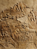 Roman Relief with Circus games, 4th century AD from Obzor Photographic Print
