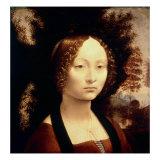 Ginevra de Benci, 1480 Giclee Print by  Leonardo da Vinci