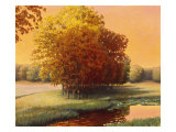 Late Summer Meadow Giclee Print by Stephen Henning
