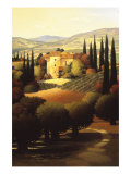 Green Hills of Tuscany II Gicle-tryk af Max Hayslette