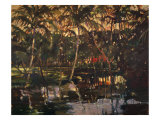 Tropical Reflections Giclee Print by Darrell Hill
