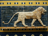 Lion, Glazed Brick Relief, 604-562 BC, Neo-Babylonian Photographic Print