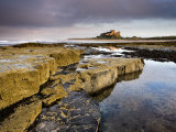 Bamburgh Castle Bathed in Evening Light with Foreground of Barnacle-Encrusted Rocks and Rock Pools Photographic Print by Lee Frost