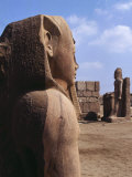 Colossal Statues, Great temple of Shoshenq III, c. 835-785 Tanis, Nile Delta, Egypt Photographic Print