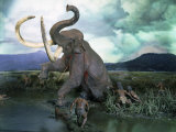 Mammoth Hunt, Lower Paleolithic era, Reconstruction Photographic Print