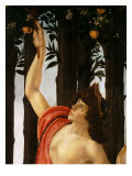 La Primavera (Spring,) Detail of Mercury Holding Wand to Orange Tree Giclee Print by Sandro Botticelli