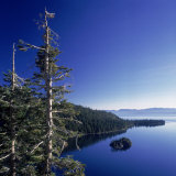 Fannette Island in Emerald Bay with Sugar Pine, Emerald Bay State Park, Lake Tahoe, California Photographic Print by Deon Reynolds