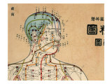 Acupuncture Points and Meridians of Human Body Giclee Print