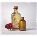 Still Life of a Dry Rose and Bottles Photographic Print by Diane Miller