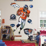 Knowshon Moreno Wall Decal