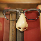 Joke Glasses and Nose in Bookshelf Photographic Print by  Snap Decision