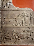 King Assurbanipal Hunting, Relief, c. 645 BC Assyrian, from Nineveh Photographic Print