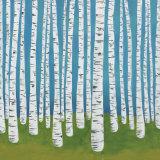Birch Grove Kunst af Lisa Congdon