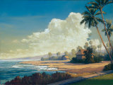 Kona Coast II Art by Allan Stephenson