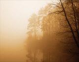 Fog on Shelly Lake I Plakater af Alan Hausenflock