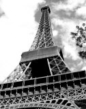 Eiffel Tower II Print by Susan Frost