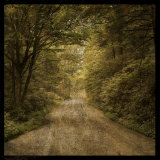 Flannery Fork Road No. 1 Prints by John Golden