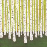 Birch Forest Plakater af Lisa Congdon