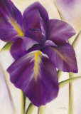 Purple Blossom I Prints by Caroline Wenig