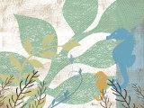 Sea Life I Prints by Jennifer Pugh