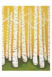 Autumn Birches Plakater af Lisa Congdon
