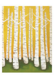 Lisa Congdon - Autumn Birches - Reprodüksiyon