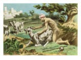 Ancient Greek Sodomising a Goat, plate XVII from 'De Figuris Veneris' by F.K. Forberg, pub. 1900 Reproduction procédé giclée par Edouard-henri Avril