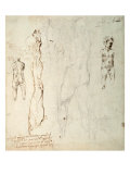 Study of the Christ Child and an Anatomical Drawing with Notes Giclee Print by  Michelangelo Buonarroti