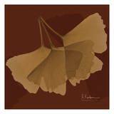 Color Me Ginko Brown II Prints by Albert Koetsier