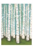 Lisa Congdon - Summer Birches Obrazy