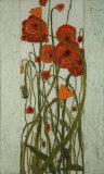 Poppy Garden Print by David Winston