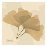 Color Me Ginko Natural I Prints by Albert Koetsier