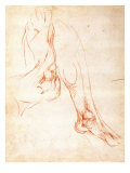 Study of a Lower Leg and Foot Giclee Print by  Michelangelo Buonarroti