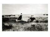 Cowboy on Horseback Lassooing a Calf Giclee Print by L.a. Huffman