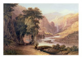 Tasmanian Gorge Giclee Print by John Glover