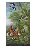 Cock Pheasant, Hen Pheasant and Chicks and Other Birds in a Classical Landscape Giclee Print by Pieter Casteels