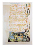 The Tyger, from Songs of Innocence Lámina giclée por William Blake