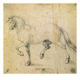 Horse, 1503 Giclee Print by Albrecht Dürer